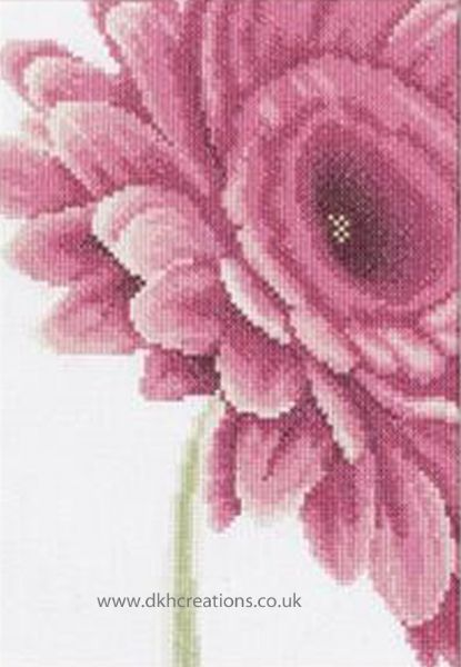 Close Up Pink Flower Cross Stitch Kit
